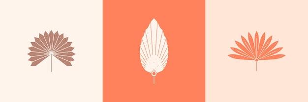 Conjunto de silhueta de folhas de palmeira abstrata em estilo simples. emblema de boho de folha tropical de vetor. ilustração floral para criar logotipo, padrão, estampas de camisetas, design de tatuagem, postagem em mídia social e histórias
