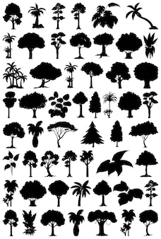 Conjunto de silhueta de planta e árvore