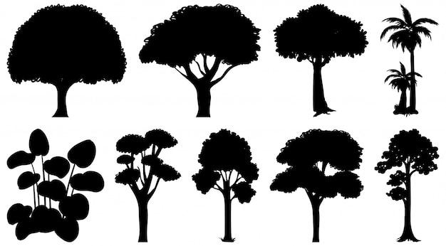 Conjunto de silhueta de plantas e árvores