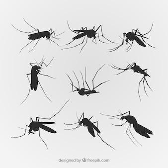 Conjunto de silhueta mosquito criativo