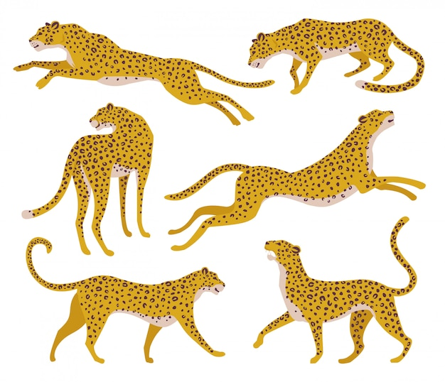 Conjunto de silhuetas abstratas de leopardos.