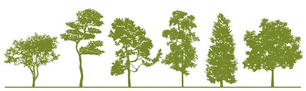 Conjunto de silhuetas de árvores detalhadas de vetores realistas árvores florestais verdes isoladas para seu projeto