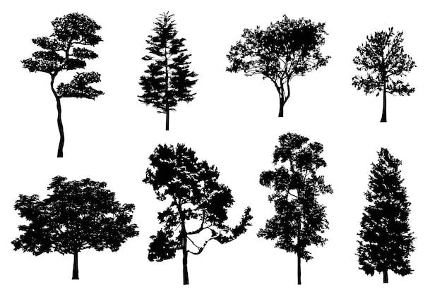 Conjunto de silhuetas de árvores detalhadas de vetores realistas árvores isoladas da floresta negra para seu projeto