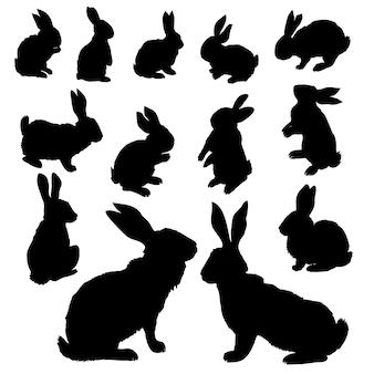 Conjunto de silhuetas de coelho