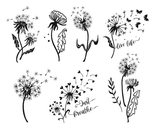 Conjunto de silhuetas de dente de leão. ilustrações de ervas