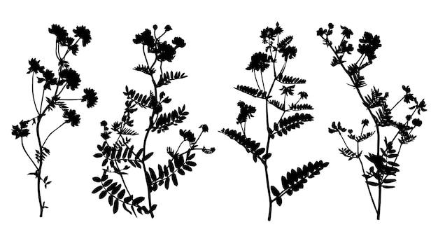Conjunto de silhuetas de flores silvestres isoladas no fundo branco. coleção de flores do prado. ilustração vetorial.