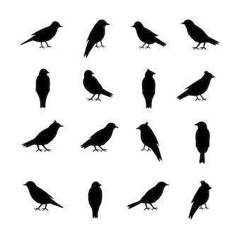 Conjunto de silhuetas de pássaros em fundo branco.