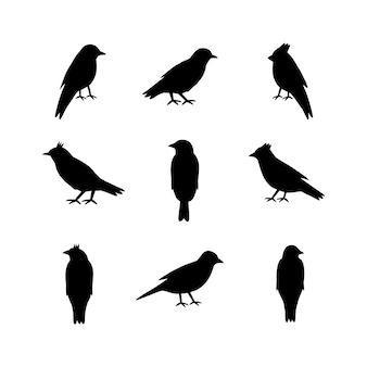 Conjunto de silhuetas de pássaros no fundo branco