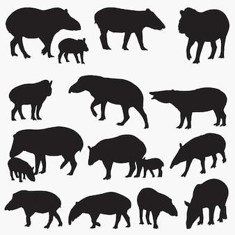 Conjunto de silhuetas de tapir