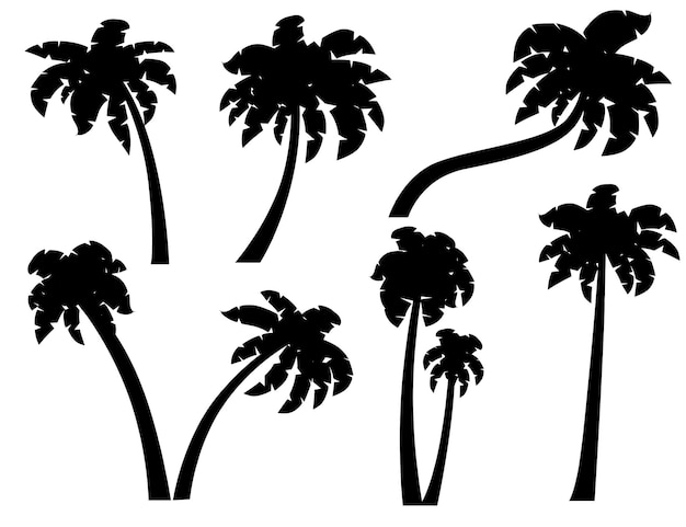 Conjunto de silhuetas negras de palmeiras com diferentes troncos ilustração vetorial plana isolada no fundo branco