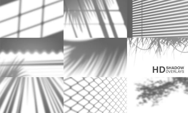 Conjunto de sombras transparentes orgânicas para efeitos de luz natural