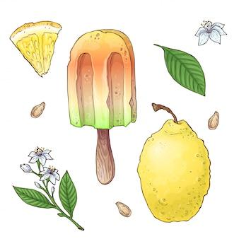 Conjunto de sorvete cítrico
