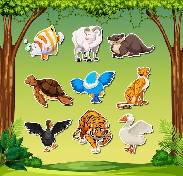 Conjunto de sticket animal