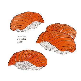 Conjunto de sushi de salmão
