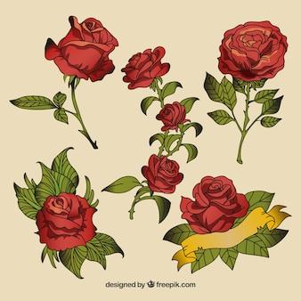 Conjunto de tatuagens de rosas desenhadas à mão
