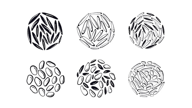 Conjunto de textura de arroz diferentes tipos de grãos de cereais sushi branco detalhado e semente preta selvagem