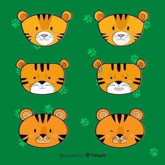 Conjunto de tigre bonito