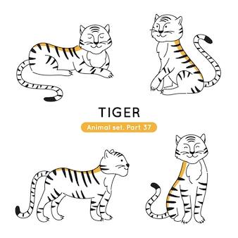 Conjunto de tigres doodle em várias poses isolado