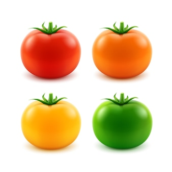 Conjunto de tomate inteiro fresco grande e maduro vermelho laranja verde amarelo close-up sobre fundo branco