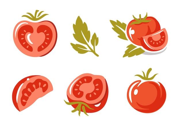 Conjunto de tomates. inteiro, fatiado, quarto, meio.