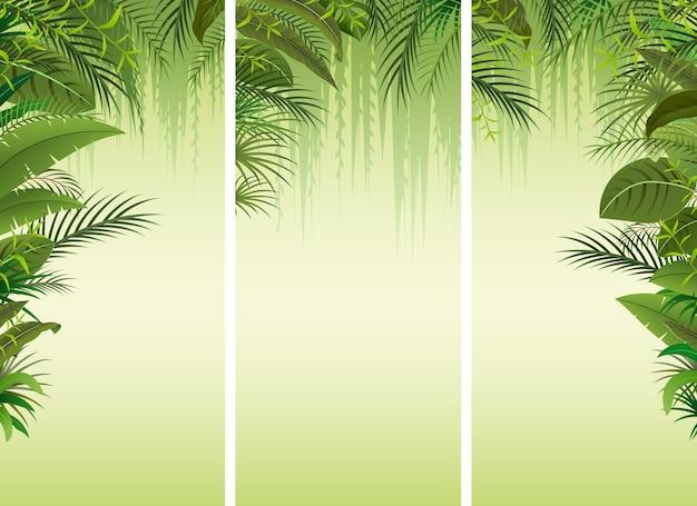 Conjunto de três fundo de floresta tropical