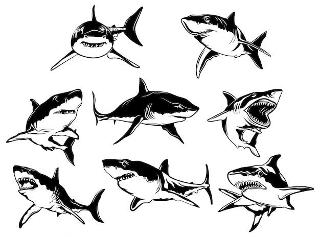 Conjunto de tubarões. coleção de silhuetas de peixes marinhos nadadores predadores.