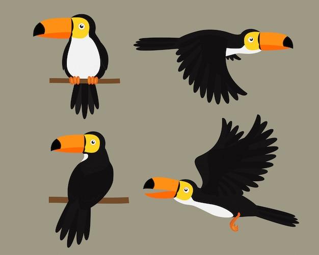 Conjunto de tucanos pássaro personagem dos desenhos animados