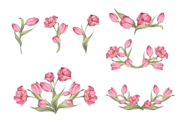 Conjunto de tulipas cor de rosa e folhas.