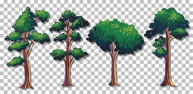 Conjunto de várias árvores em fundo transparente