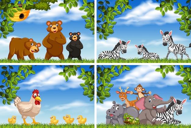Conjunto de vários animais em cenas da natureza