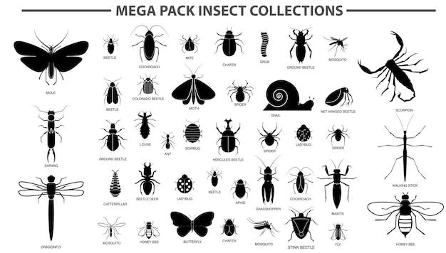Conjunto de vários insetos em silhueta com o nome do inseto vetor eps