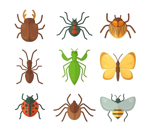 Conjunto de vários insetos