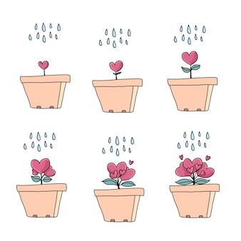 Conjunto de vasos de flores