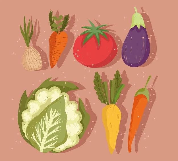 Conjunto de vegetais, cenoura, berinjela, couve-flor, cenoura e pimenta malagueta