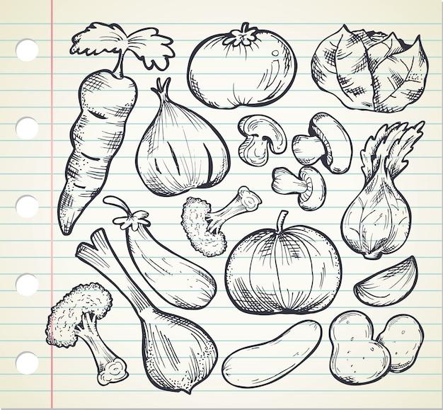 Conjunto de vegetais desenhados a mão