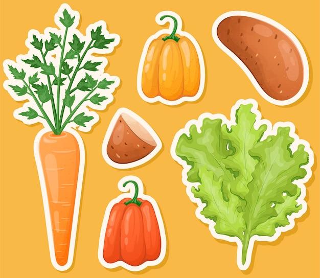 Conjunto de vegetais e ervas isolados