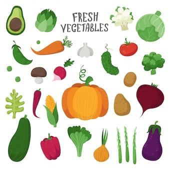 Conjunto de vegetais em estilo cartoon