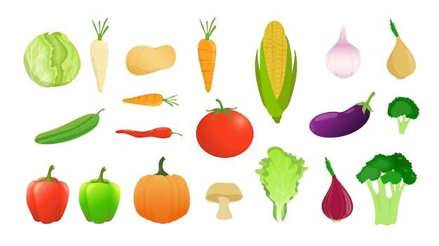 Conjunto de vegetais em estilo simples