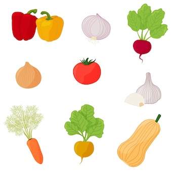 Conjunto de vegetais frescos tomate nabo cenoura beterraba cebola alho