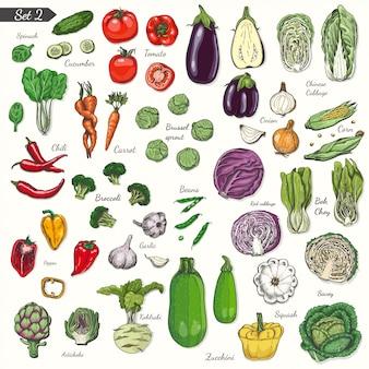 Conjunto de vegetais no estilo de desenho