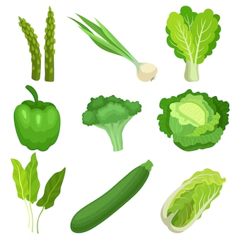 Conjunto de vegetais verdes frescos.