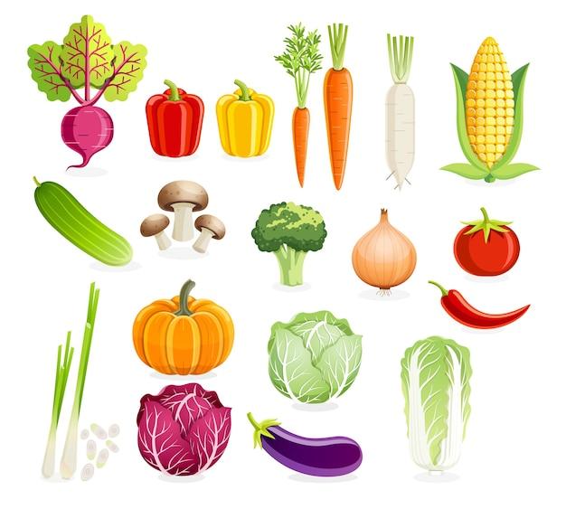 Conjunto de vegetais.