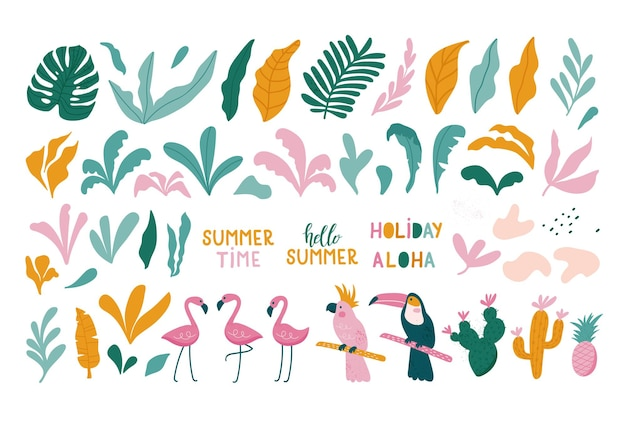 Conjunto de verão de folhas tropicais de elementos de design, flamingos, tucano, papagaio.