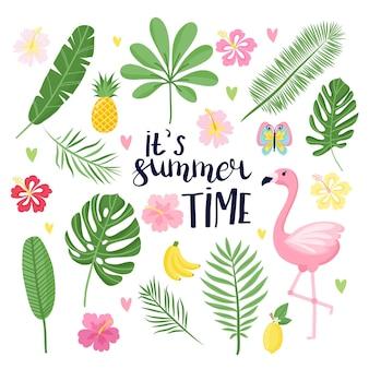 Conjunto de verão, ilustrações de temporada tropical de verão. ilustração brilhante em estilo cartoon. ideal para cartão de felicitações, convite de festa, panfleto ou cartaz.