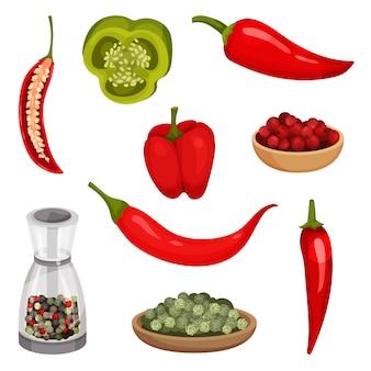 Conjunto de vetor plana de pimentos frescos e condimentos.