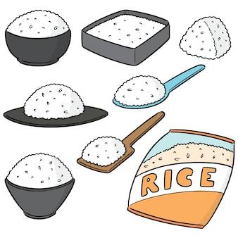 Conjunto de vetores de arrozes