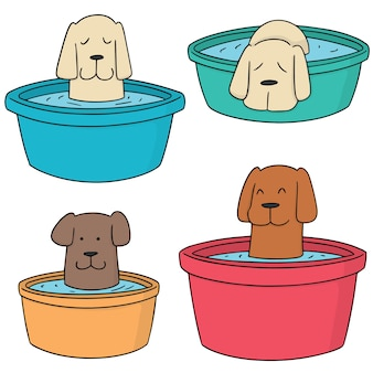 Conjunto de vetores de banho de cachorro