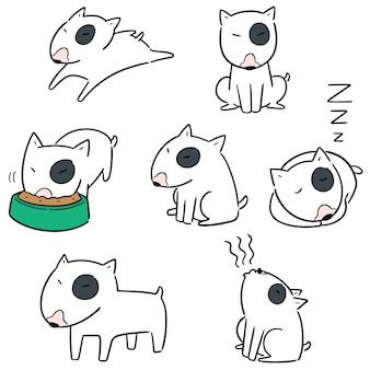 Conjunto de vetores de cachorro bull terrier