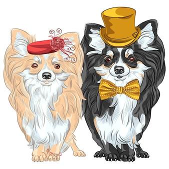 Conjunto de vetores de cães da moda chihuahua, senhora de chapéu vermelho com pulseira e cavalheiro com chapéu de seda dourado e gravata borboleta