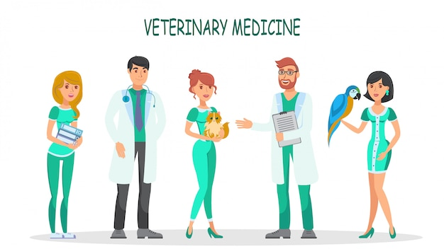 Conjunto de vetores de caracteres planas de medicina veterinária